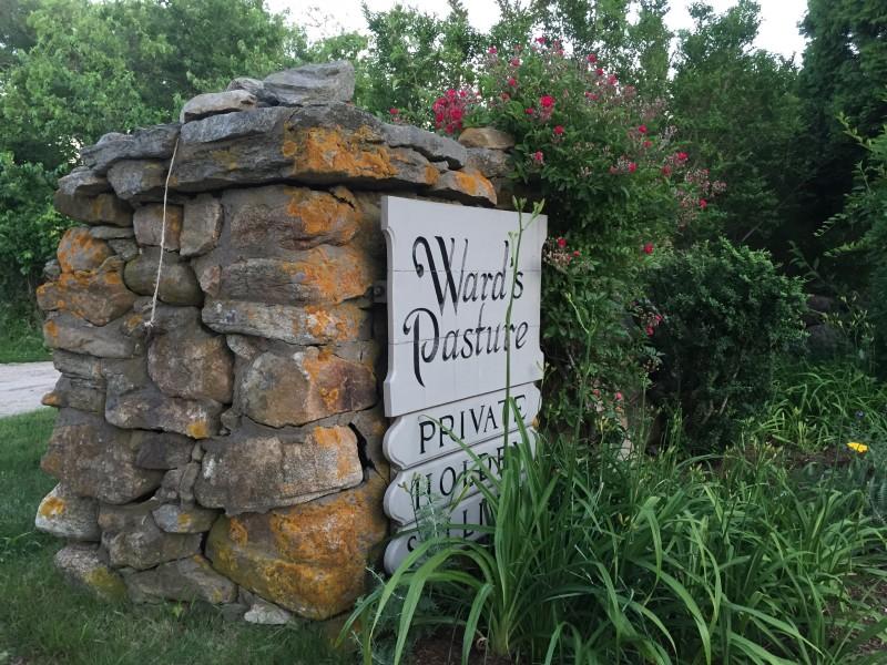 Wards Pasture