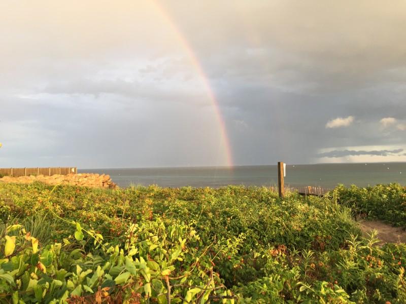 Rock Report Double Rainbow
