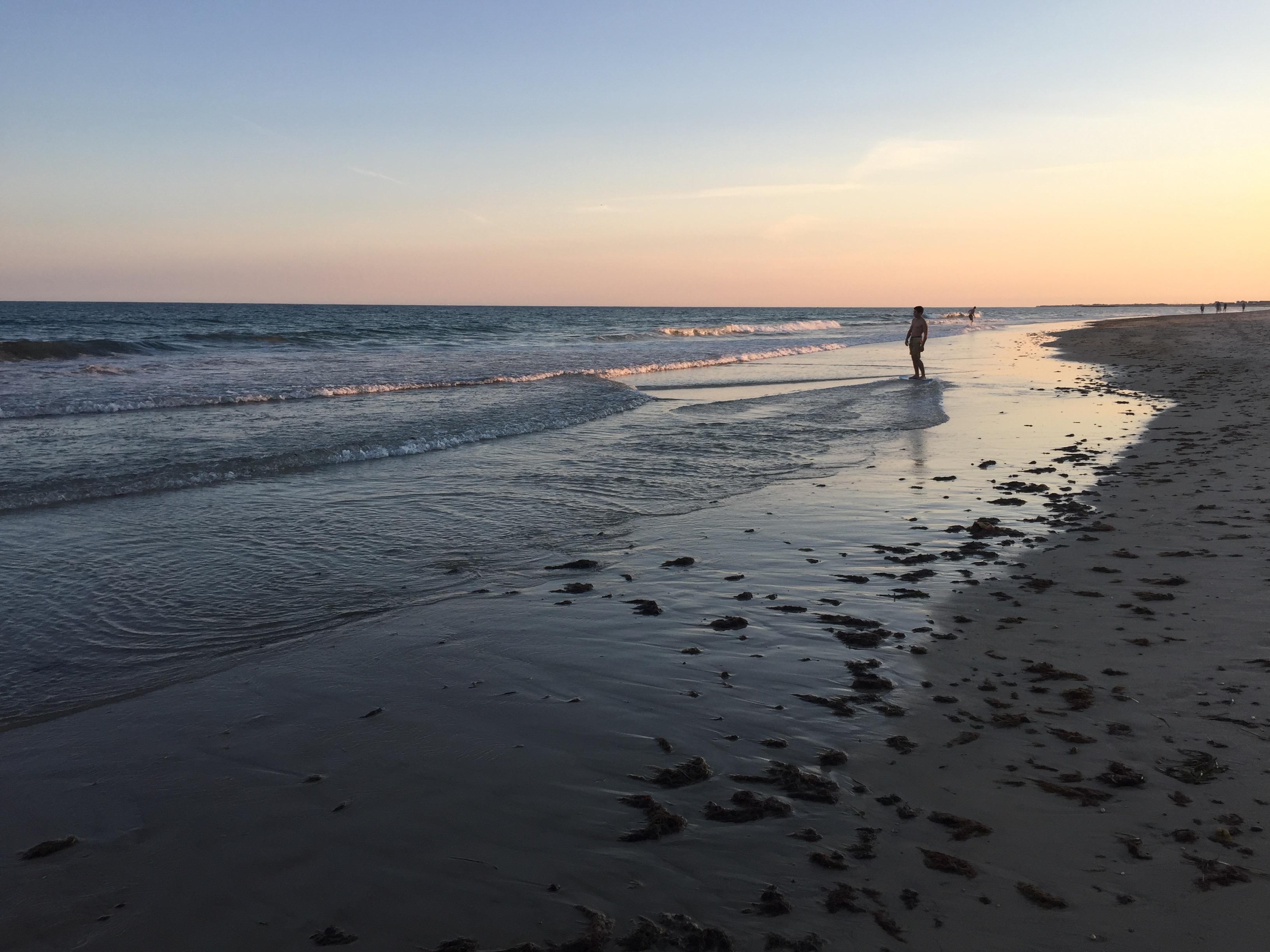 Seaweed Landing